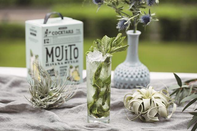 Mojito BIB - Vikingfjord Vodka Cocktails Mojito